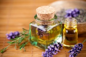 oil-herbal-3-lavender